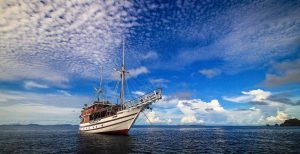 Just imagine birding remote Indonesian Islands in the Banda Sea while travelling on this beautiful boat!